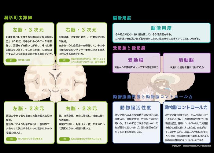 脳活用度診断